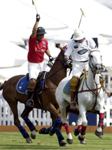 #7 - Polo Tournament Patron