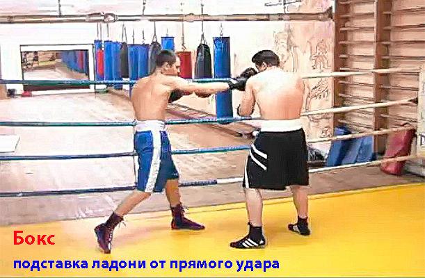 бокс1