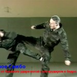 Харлампиев А.А. — Система самбо Боевое искусство