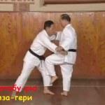 «Болевые точки», Атакующие и защитные части тела