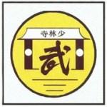 федерация шаолинских боевых искусств