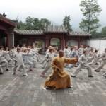 Все виды боевых искусств от А до Я — Л