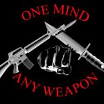 Рукопашный бой спецназа: MCMAP — Техники (Часть 2.1) Серый пояс