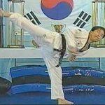 Тхэквондо— обучающие материалы (часть 2) — Sang H. Kim