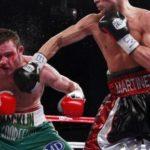 Бокс профессиональный