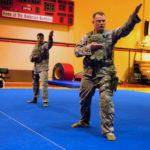 <b>Комбат Айкидо</b> (Combat Aikido)
