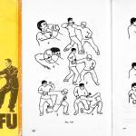 Книга  ВУ-ШУ (KUNG-FU) Рекомендации для начинающих