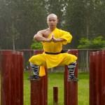 «Тайное боевое искусство Шаолиня» — <b>документальный фильм</b>