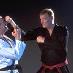 Иссин Рю Каратэ: Традиционная спарринговая техника / Isshin Ryu Karate traditional Sparring Technikques [KARATE Isshin Ryu, VHSRip, RUS] (Видеоурок)