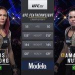 Видео боя Аманда Нуньес против Крис Сайборг / Amanda Nunes vs Cris Cyborg — UFC 232