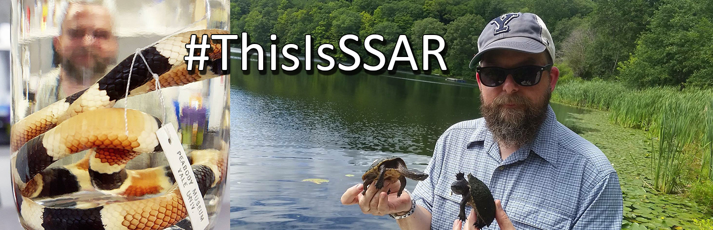 #ThisIsSSAR: Lizard dreams and Gregory Watkins-Colwell
