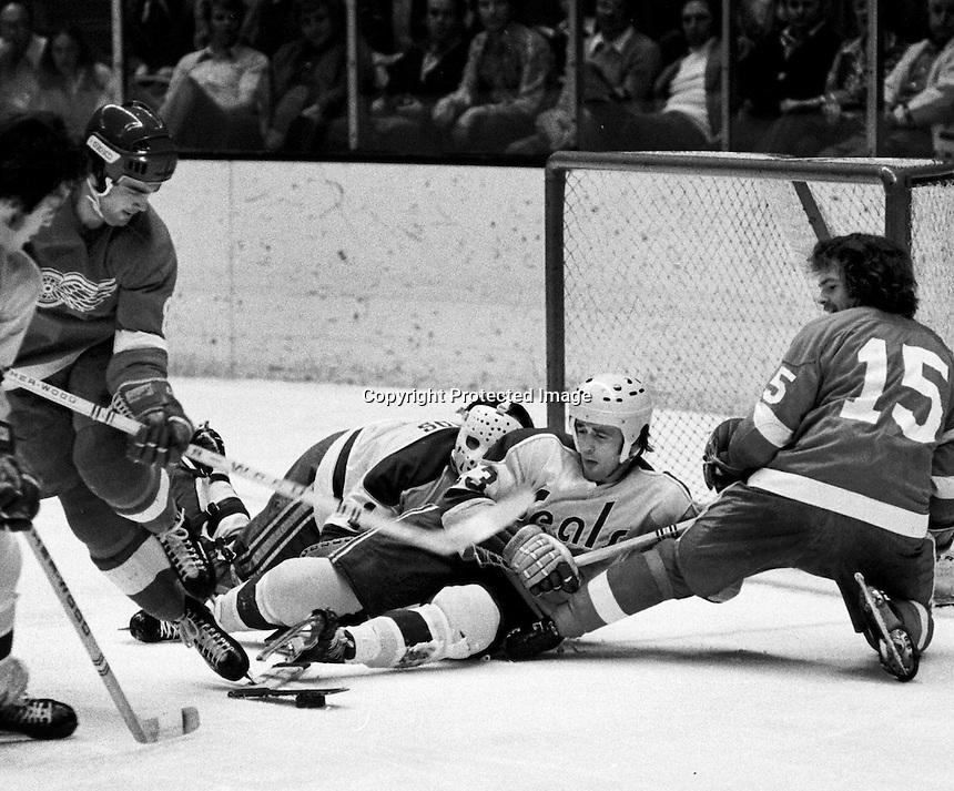 Seals Hockey Ron Riesterer Photography