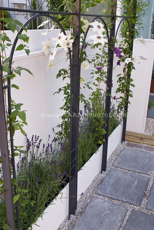 Indoor Herb Garden Wall