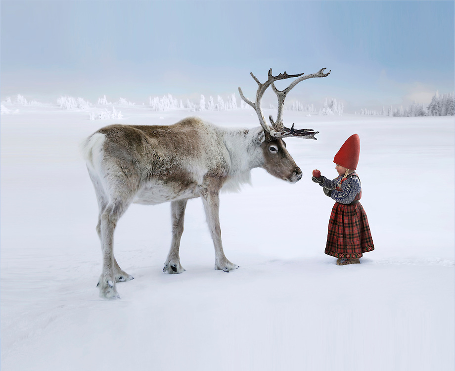 ELF AND REINDEER The Christmas Wish