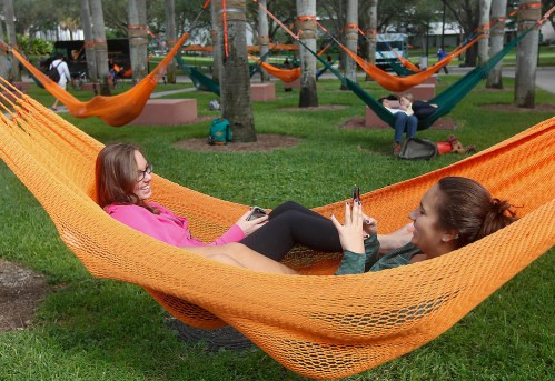 Image result for hammocks at umiami