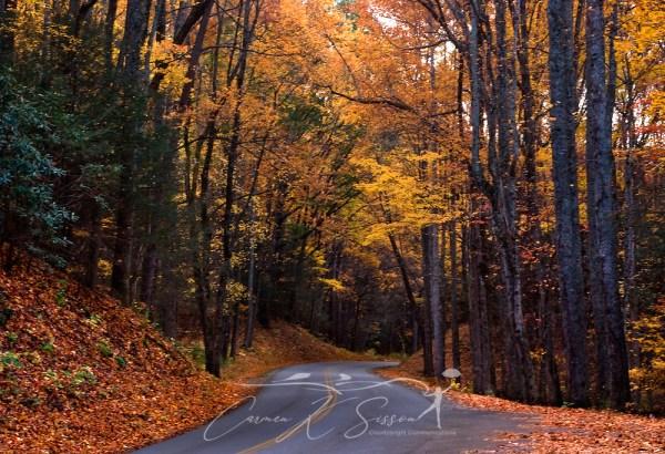 Smoky Mountains Little River Road in fall | Carmen K ...