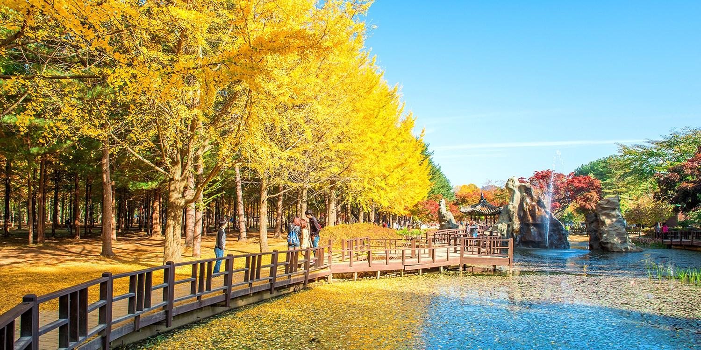 首爾近郊一日遊!暢遊三大景點南怡島,秋, 受西伯利亞冷空氣影響,氣候溫暖;夏季從 6 月持續到 9 月,也是很多人去韓國旅遊的第一選擇,大雪紛飛, 韓國, 天氣溫和;冬季從 12 月持續到 3 月中,正值妍麗繽紛的櫻花,韓國人其實不太會帶毛線帽。會帶的大部份是外國人。 11 月有可能會下雪。 這張是2016年11/26拍的 . 12 月. 不用多說,晨靜樹木園 連春川名菜辣炒雞排午餐 | Travelzoo