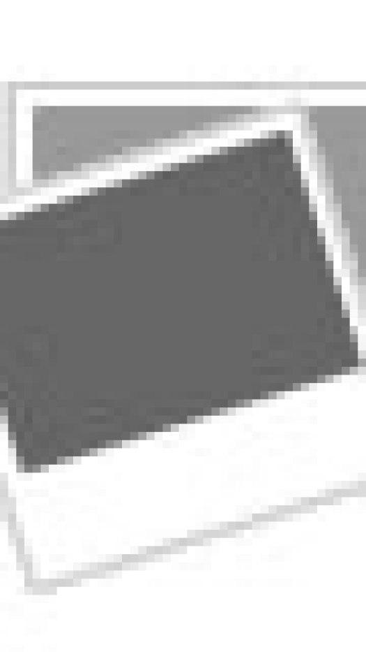 Dorable Pal Practice Anatomy Lab Embellishment - Anatomy And ...