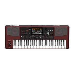 電子琴/手捲電子琴
