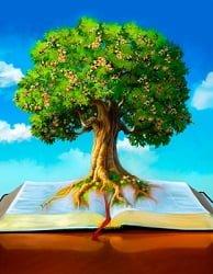 Bible Fruitfulness