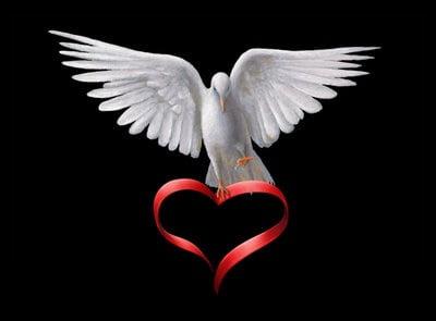 Dove Holding Ribbon Heart