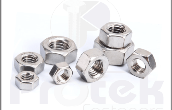 Stainless Steel Hex Nuts Manufacturer India