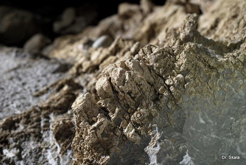 , Javorinka, Slovenská speleologická spoločnosť