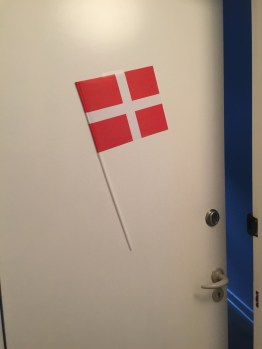 Birthday flag on my door!