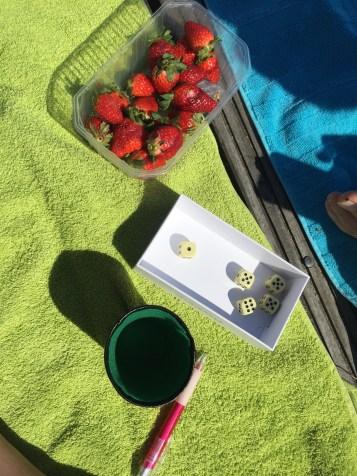 summer day + yahtzee + strawberries + canal