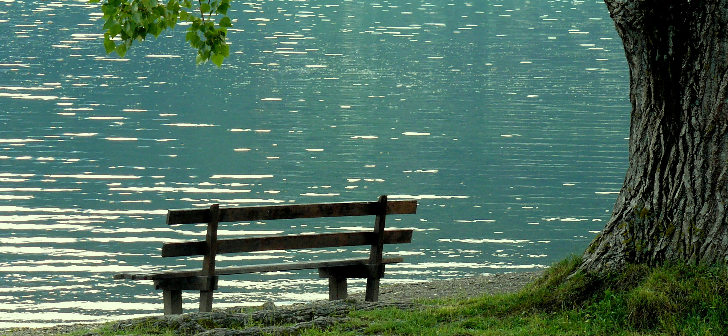 bench by lake