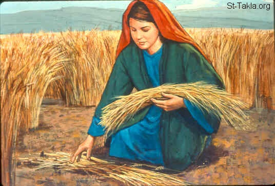 Image result for ruth gleaning in the field