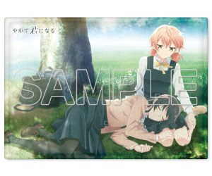 Bloom Into You Mofu Fuwa Blanket