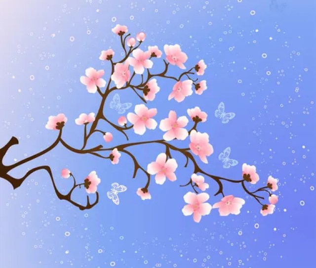 Cherry Blossoms At Night Stock Vector