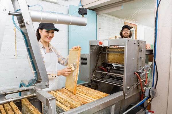 Счастливые пчеловоды, работающие на заводе по добыче меда ...