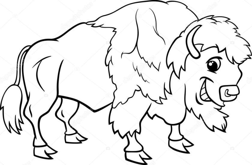 coloriage de bison bison américain — image vectorielle