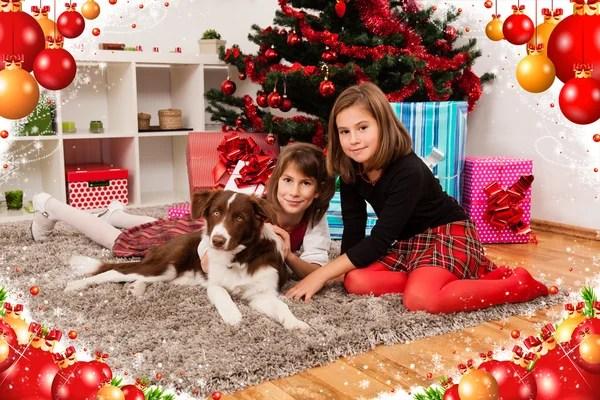 Собака у камина на дому — Стоковое фото © yekophotostudio ...