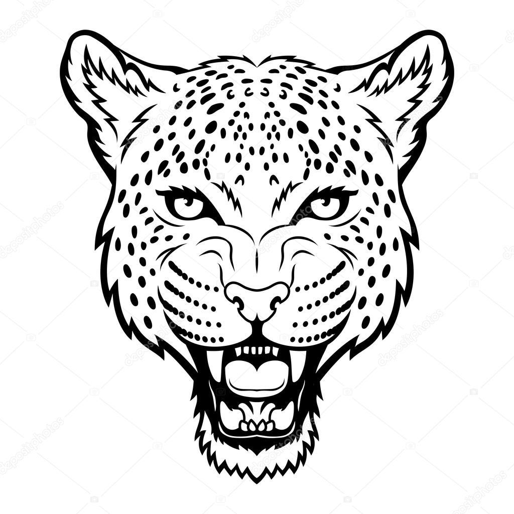 Leopard Roar Drawing