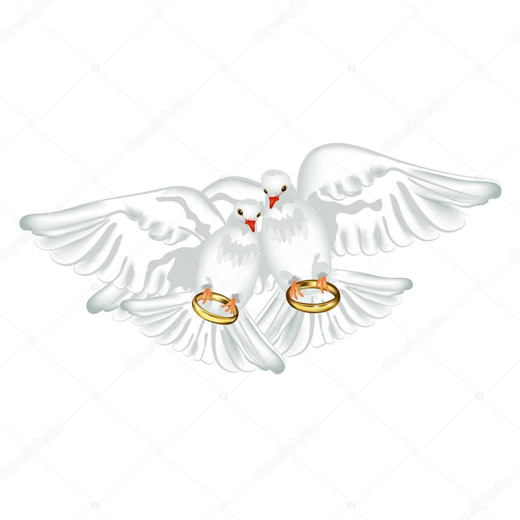 Pigeons And Wedding Rings