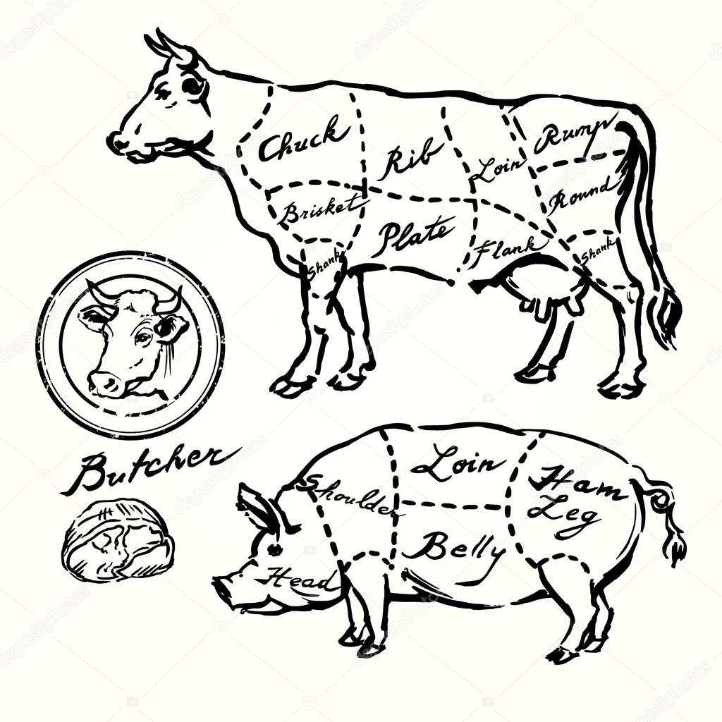 Pork And Beef Cuts