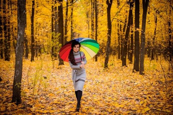 Человек осенью с зонтиком в лесу — Стоковое фото ...