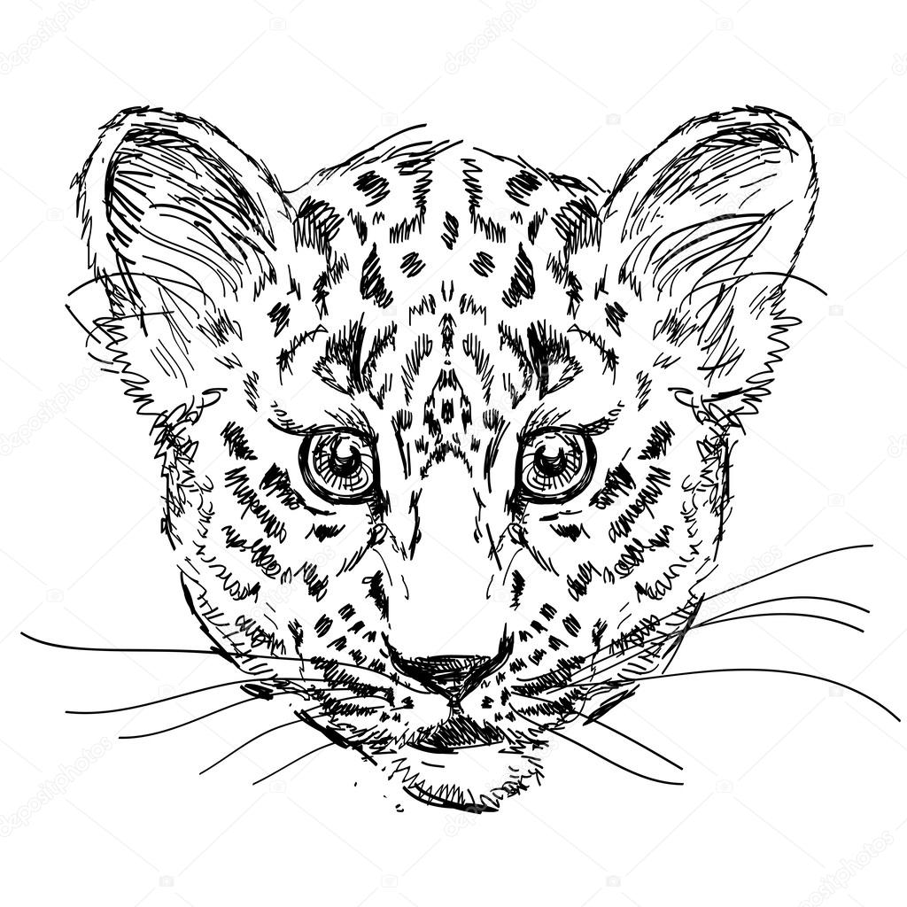 Face Of Leopard Coloring Pages