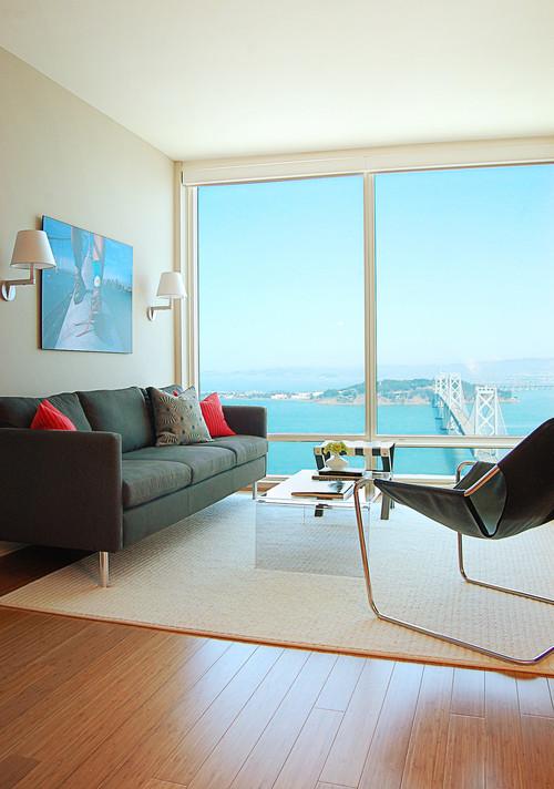 Rincon Hill Condo modern living room