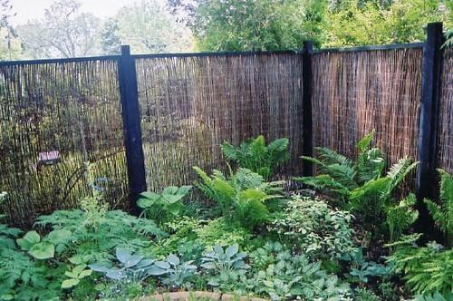 Ray Johannes Landscape Design, Toronto - Perennial Gardens traditional landscape