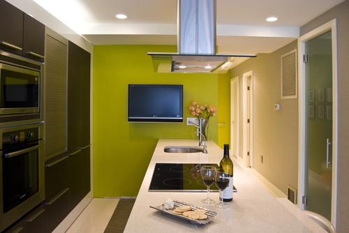 Condo unit interior renovation contemporary kitchen