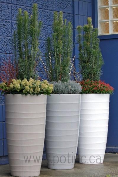 contemporary garden planters Growing Dahlias For Cut blooms – 2 autumn Fantastic