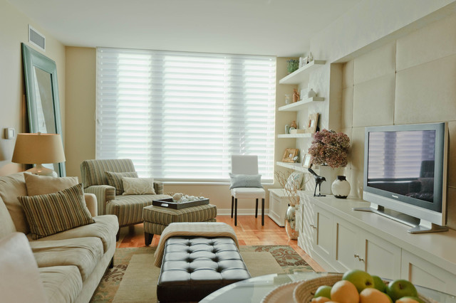Cabinetry in Small Spaces - Modern - Living Room - san ...