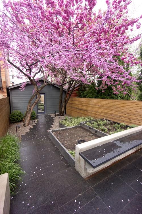Small Backyard Ideas No Grass - Add Value to Your Home on Backyard Ideas No Grass  id=70992