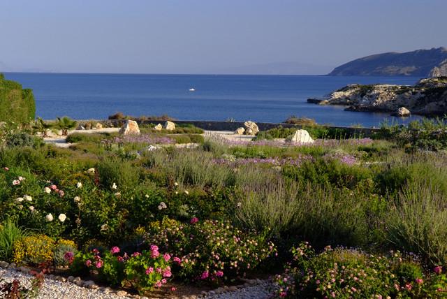 paisagem mediterrânea por Carolyn Chadwick