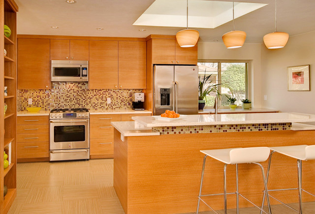 Mid Century Kitchen Modern