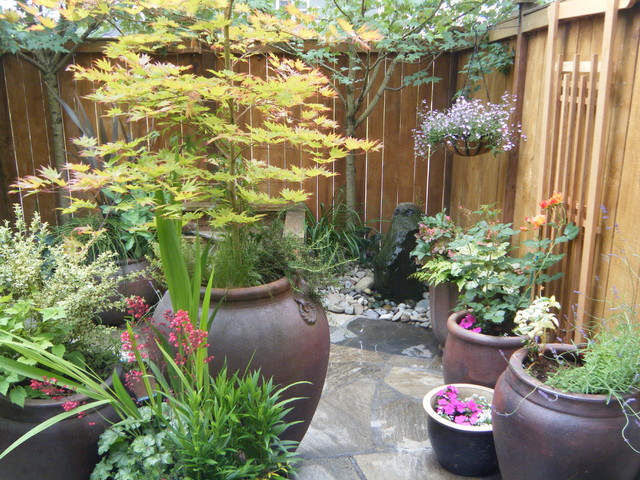 Small backyards - Traditional - Patio - seattle - by Puget ... on Houzz Backyard Patios  id=47664
